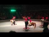Пони в Ижевском цирке